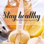 Healthy Holiday Survival Guide Workshop!